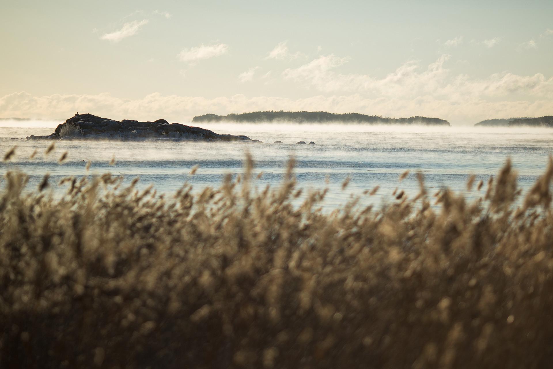 Bird islets abandoned / Photo: A. Kuusela